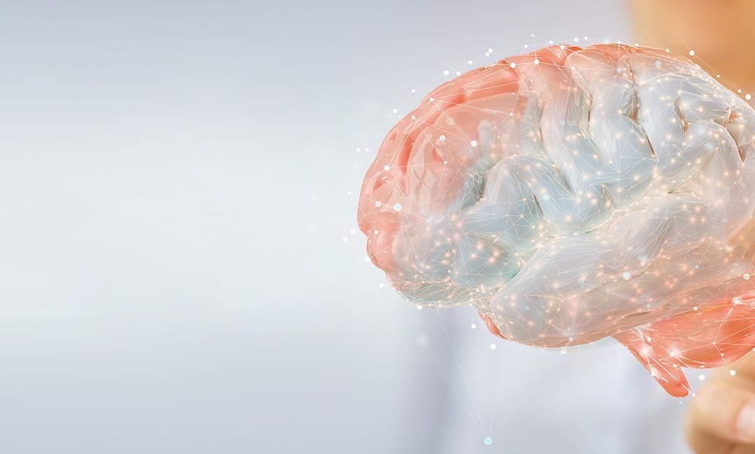 Funzioni cognitive: ecco come il cervello si mantiene giovane e sano